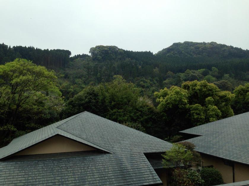 照葉庵から見える景色