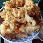 綾町『酒泉の杜』の照葉庵の海鮮かき揚げ丼が美味かった