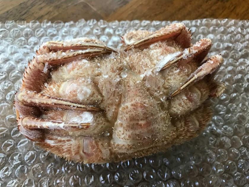 かにまみれ『四大蟹セット』の毛ガニ(裏側)